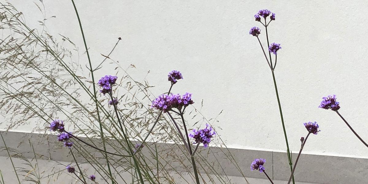 Studio Gatti architetto paesaggista Varese